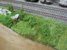 Begroeiing langs de Unterbergen paradebaan